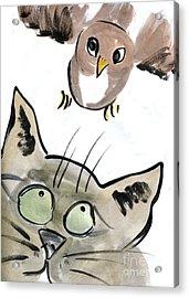 Bird Acrylic Print by Ellen Miffitt