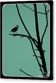 Bird On A Branch Acrylic Print by Avis  Noelle