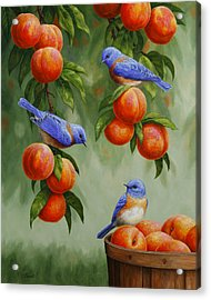 Bird Painting - Bluebirds And Peaches Acrylic Print by Crista Forest