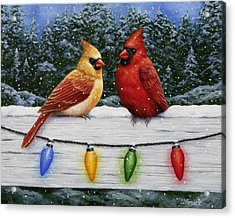 Bird Painting - Christmas Cardinals Acrylic Print by Crista Forest