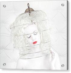 Birdcage Love Acrylic Print by John Andre Aasen