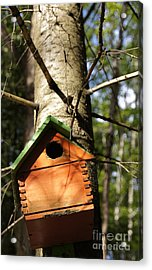 Birdhouse By Line Gagne Acrylic Print by Line Gagne