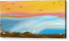 Birds Over The Ocean Acrylic Print by Constance Carlsen