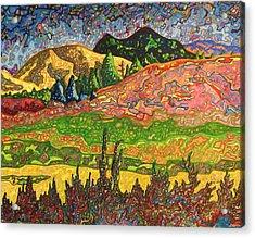 Birdseye Landscape #2 Acrylic Print by Dale Beckman