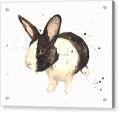 Black And White Bunny Acrylic Print by Alison Fennell