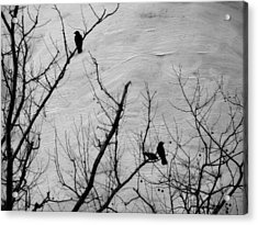 Black Birds Acrylic Print by Kathy Jennings