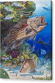 Black Grouper Hole Acrylic Print by Carey Chen