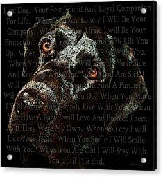 Black Labrador Retriever Dog Art - I Am Dog Acrylic Print by Sharon Cummings