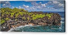 Black Sand Beach Maui Hawaii Acrylic Print by Edward Fielding