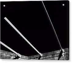 Black Velvet Acrylic Print by Wendy J St Christopher