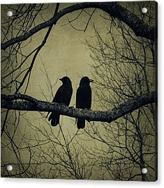 Blackbirds On A Branch Acrylic Print by Patricia Strand