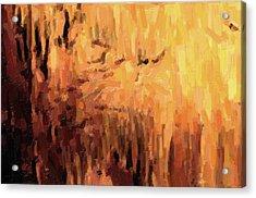 Blanchard Springs Caverns-arkansas Series 01 Acrylic Print by David Allen Pierson