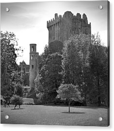 Blarney Castle Acrylic Print by Mike McGlothlen