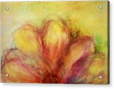 Bloom  Acrylic Print by Ann Powell