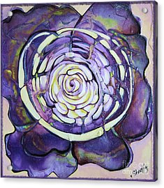 Bloom Iv Acrylic Print by Shadia Derbyshire