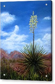 Blooming Yucca Acrylic Print by Roseann Gilmore
