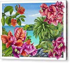 Blossom Bower Acrylic Print by Carolyn Steele
