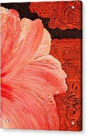 Blossom Emerging Acrylic Print by Anne-Elizabeth Whiteway