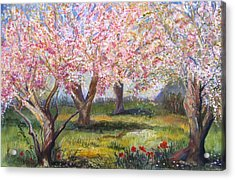Blossomtime Acrylic Print by Jacqueline Pearson