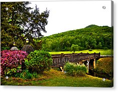 Blowing Spring Park Acrylic Print by David Patterson