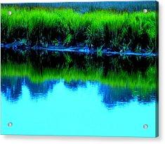 Blue Ashley Acrylic Print by Randall Weidner
