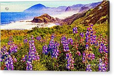 Blue Bonnets On Oregon Coastline Acrylic Print by Bob and Nadine Johnston