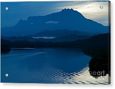 Blue Dawn  Acrylic Print by Gary Bridger
