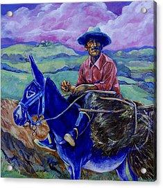 Blue Donkey Acrylic Print by Derrick Higgins