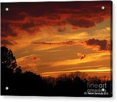 Blue Horse Sunset Acrylic Print by Rabiah Seminole