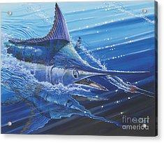 Blue Marlin Strike Off0053 Acrylic Print by Carey Chen