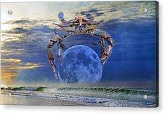 Blue Moon Crab Acrylic Print by Betsy Knapp