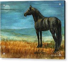 Blue Moon Acrylic Print by Linda L Martin