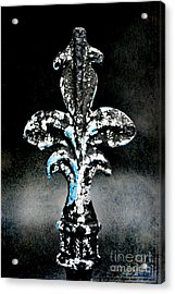 Blue On Black Acrylic Print by Scott Pellegrin