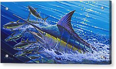 Blue Persuader  Acrylic Print by Carey Chen