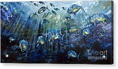 Blue Shoal Acrylic Print by Dave Hancock