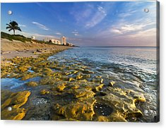 Blue Sky Over Coral Cove Acrylic Print by Debra and Dave Vanderlaan