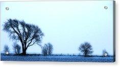 Blue Treeline Acrylic Print by Kimberleigh Ladd
