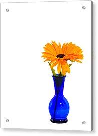 Blue Vase Acrylic Print by Cecil Fuselier