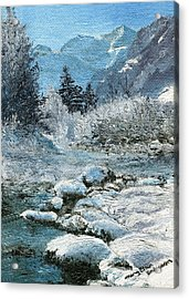 Blue Winter Acrylic Print by Mary Ellen Anderson