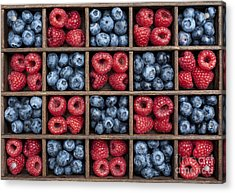 Blueberries And Raspberries  Acrylic Print by Tim Gainey