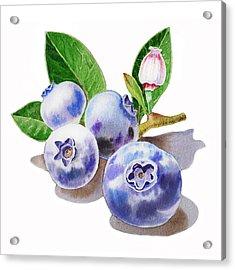 Artz Vitamins The Blueberries Acrylic Print by Irina Sztukowski