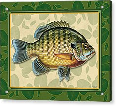 Blugill And Pads Acrylic Print by JQ Licensing