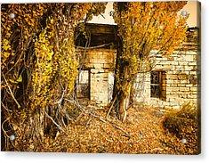 Boarding House Ruins Acrylic Print by John Williams