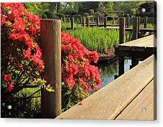 Boardwalk In Spring Acrylic Print by Scott Rackers