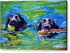 Bob And Weave Acrylic Print by Molly Poole