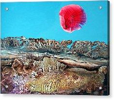 Bogomil Sunrise 2 Acrylic Print by Otto Rapp
