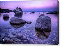 Bonsai Rock Acrylic Print by Sean Foster
