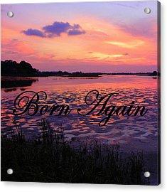 Born Again  Acrylic Print by Sheri McLeroy
