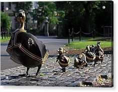 New England Acrylic Print featuring the photograph Boston Bruins Ducklings by Juergen Roth