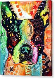 Boston Terrier IIi Acrylic Print by Dean Russo